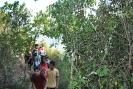 II Pujada a peu a Montserrat_9